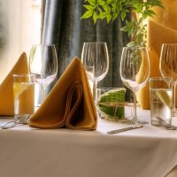 Gold-Napkins-CloseUp-200x200 Home